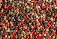 pepper transferred by the EGRETIER diverter valve and mixed by the EGRETIER dual mixer for food industry